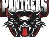 panther-logo-2003-2004